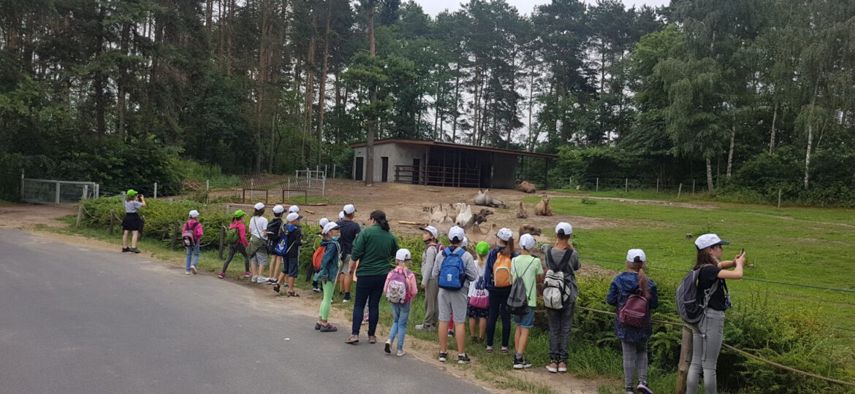 Zoo 18